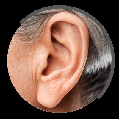 Tinnitusbehandlung bei NOVOTERUGM Physiotherapie